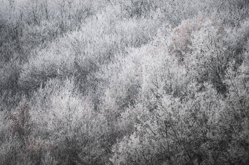 Frozen by johnpaul51
