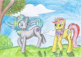Pony gathering
