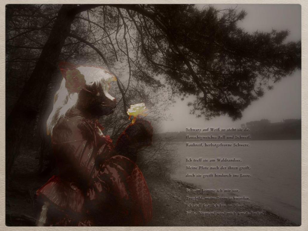 *SKUNK + NANCY*  a Gift by Antamba by ASKABANIUM
