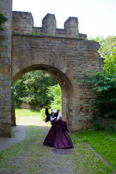 *Damsel of the Castle* at Schaumburg Castle. P2