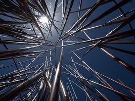 pick up sticks 5 by butterflycollector
