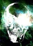 Cosmos Skull