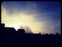 Good morning Berlin in January by carlos-nikolaus