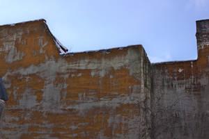wall red fungi bluesky by carlos-nikolaus