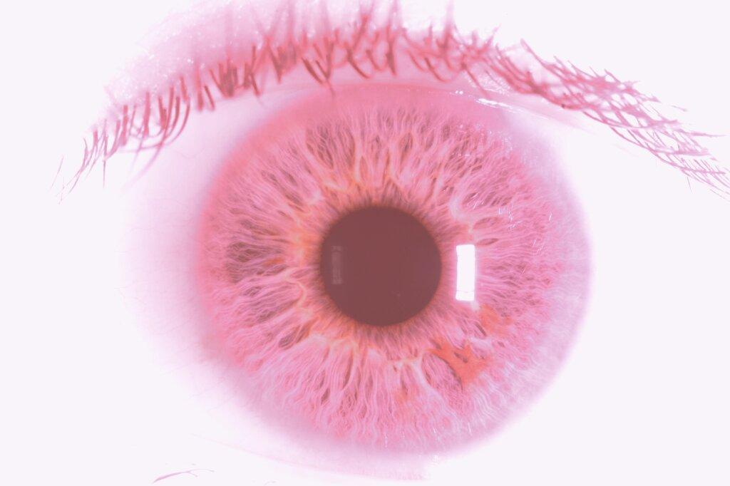 iris lashes pink by carlos-nikolaus