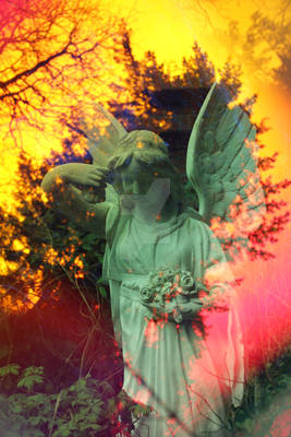 Angel 'n Wood
