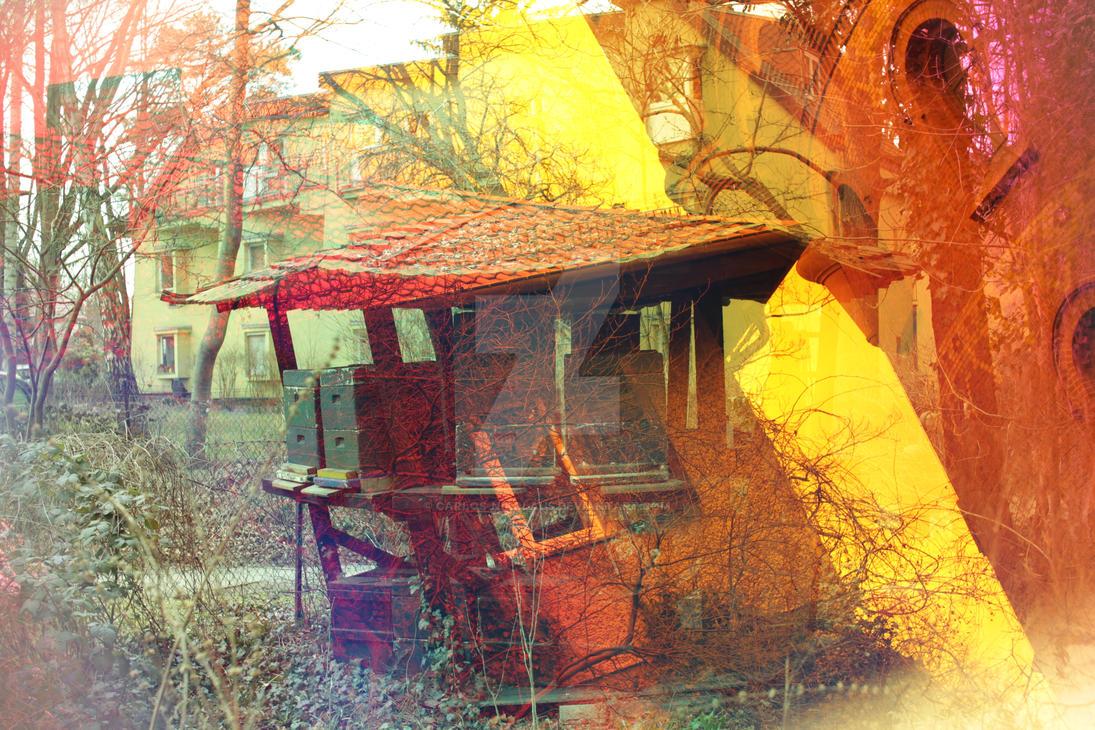 Bees-Pagode by carlos-nikolaus