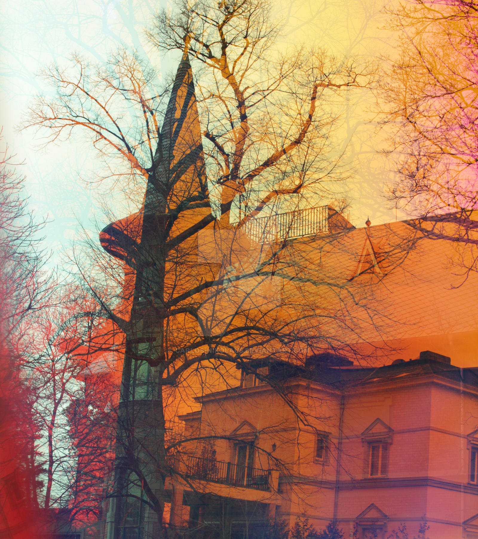 Villa Anna and residence by carlos-nikolaus