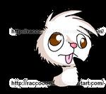 Ozzy the Opossum