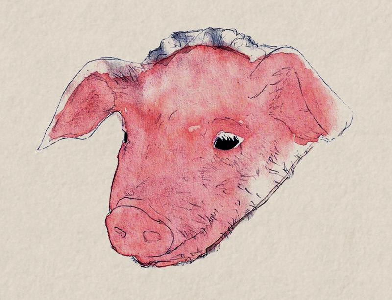 Pighead by Cheboboh