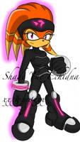 Shade the Echidna