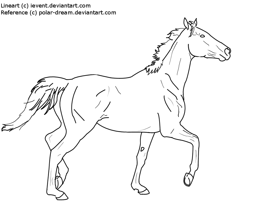 Thoroughbred line art by ievent on deviantart for Thoroughbred coloring pages