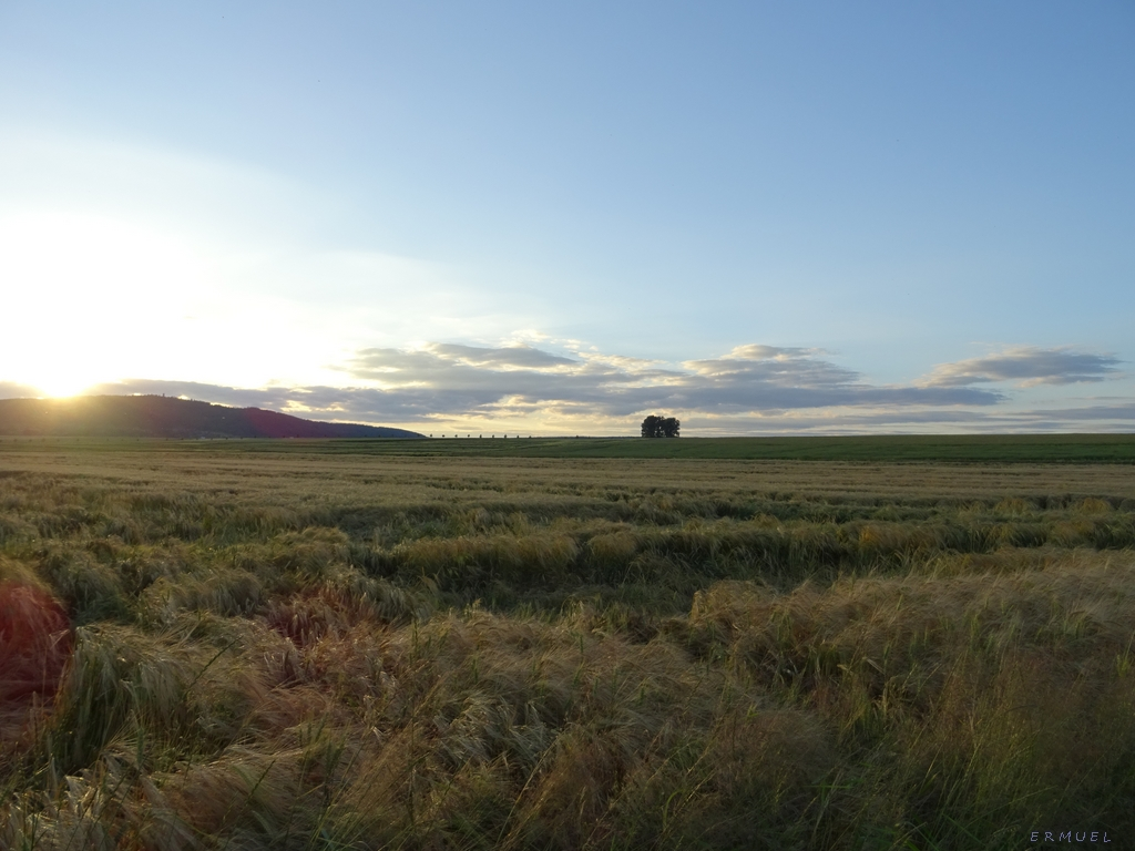 Sunset over Barley by ermuel