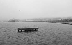 Fog by tahirlazim