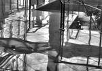 Random Abstraction on the Floor by tahirlazim