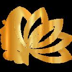 Logoopoo