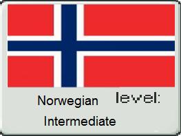 Norwegian Flag 3 by vampyremisa