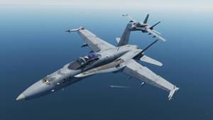 Hornet Pair