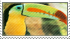 toucan stamp by batdanii
