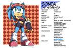 Profile: Sonia the Hedgehog