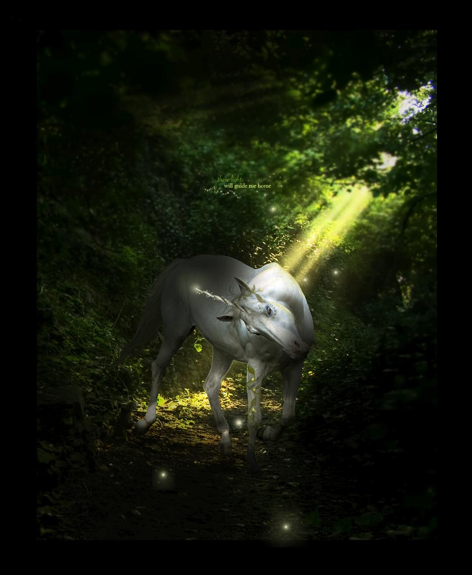 ...enchanted