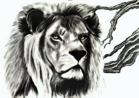 Triptych - Lion by LeitoSE