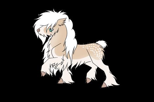 RVA Purity | Novice Saddle Doe
