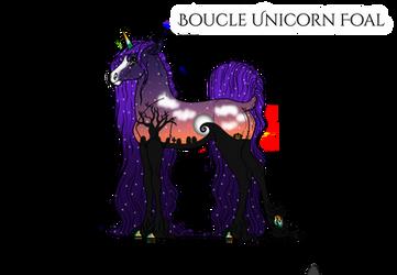 X007 | Boucle Foal Design