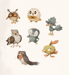 Pokemon birbs