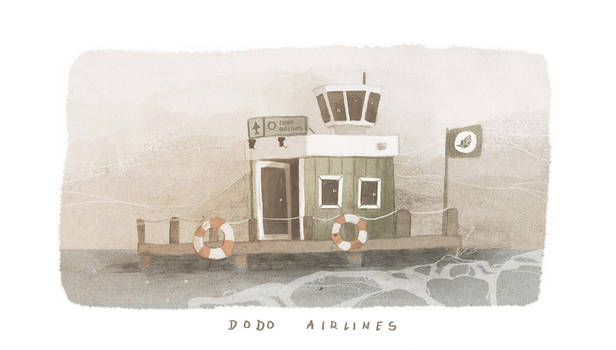 dodo airlines