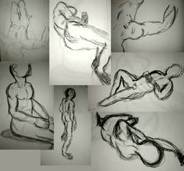 Observational Drawing by picard102