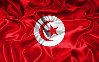 Tunisia flag by hawen005