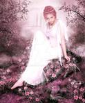 Dreamy garden of roses