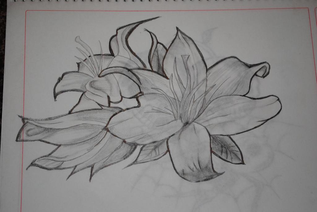 Lule Te Ndryshme