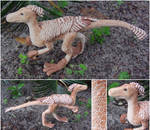 Winged Raptor