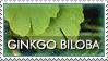 .:Ginkgo Stamp