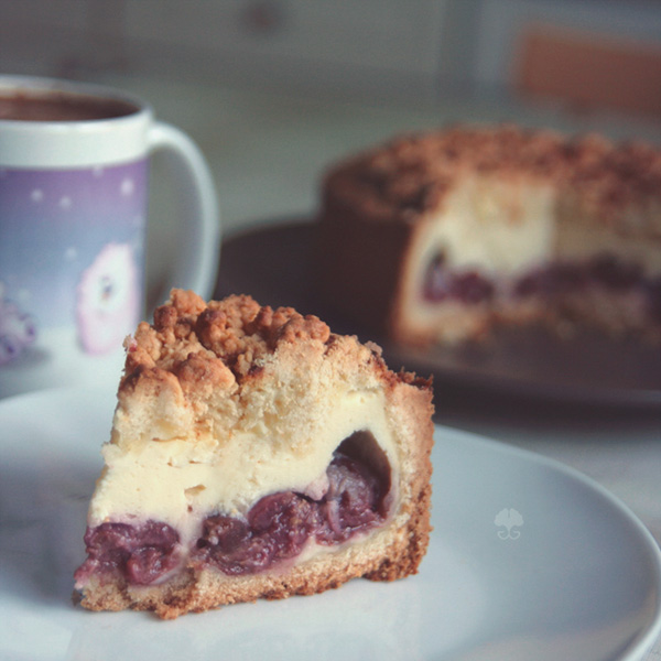 Cheesecake with Crumbles (+recipe) by ginkgografix