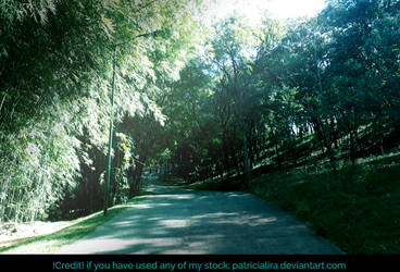 Stock Forest 4 by PatriciaLira
