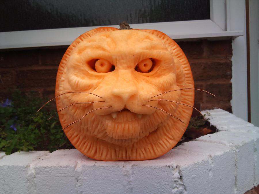 pumpkin big cat by simondrawme