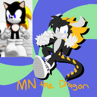 .:SONIC THE HEDGEHOG:. MegaNorper but a dragon