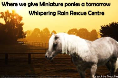 Whispering Rain Rescue Centre by MoonliteHoofbeats