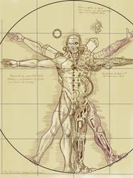 Vitruvian man by roughcutpresents