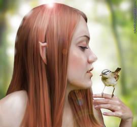 Elven Girl with Bird
