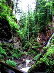Through the Wimbach Deep by KaanaMoonshadow
