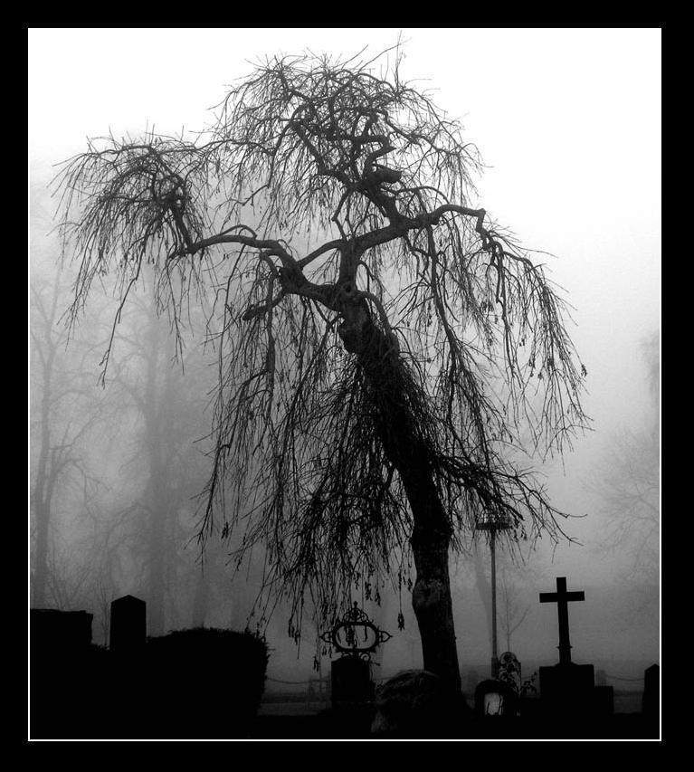 graveyard. by candyflesh