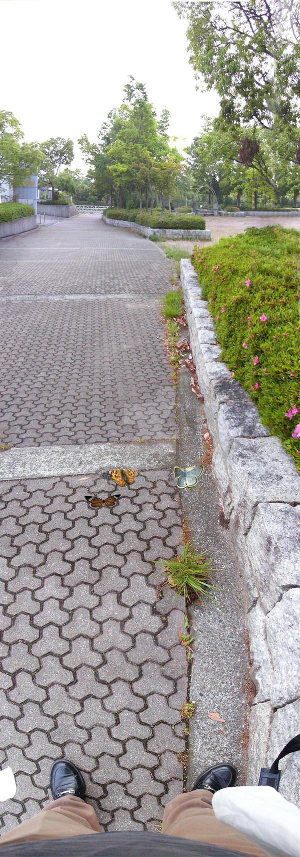 Tessellated Sidewalk by sethness