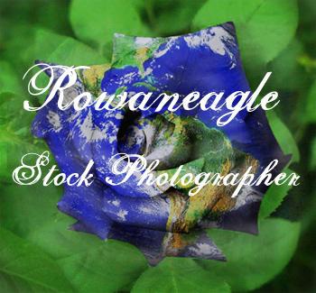 rowaneagle-stock's Profile Picture