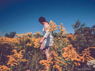 dans les champs by Marie-pierrafeu