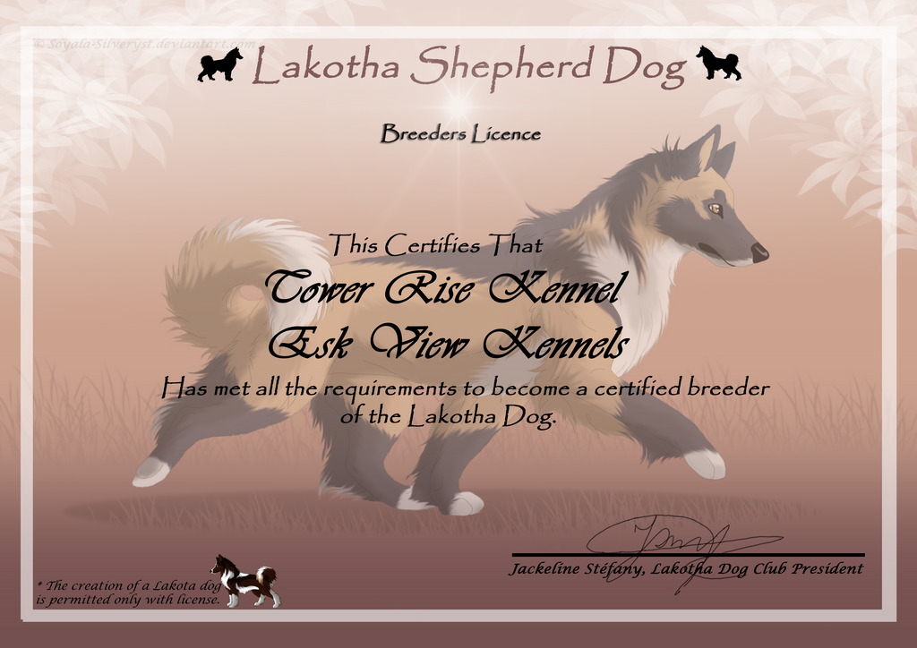 My Lakotha Breeding License by lighteningfox