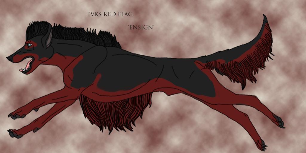 EVK's Red Flag by lighteningfox